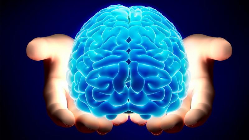 Ученые разработали «клетки-терминаторы» для уничтожения опухолей мозга