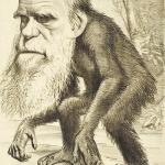 «Многоуважаемый орангутанг». Карикатура на Чарльза Дарвина в журнале «Шершень» (1871)