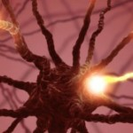 Ученые выяснили причину шизофрении?